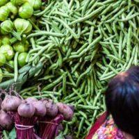 ODS 2: Hambre Cero |México COVID-19