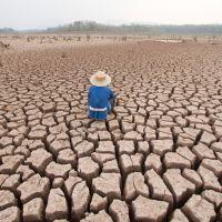 ODS 13: Acción por el Clima |México COVID-19