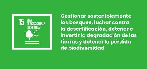 SDG 15 grande es