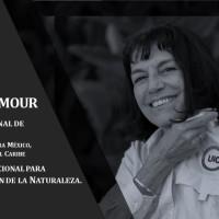 ENTREVISTA: Tania Ammour- Gerente Regional de Programa de la Unión Internacional para la Conservación de la Naturaleza | ODS 15: Vida de Ecosistemas Terrestres